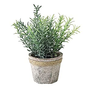 Time Concept Decor Imitation Rosemary Plant – Artificial Indoor/Outdoor Houseplant