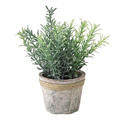 Time Concept Decor Imitation Rosemary Plant - Artificial Indoor/Outdoor Houseplant