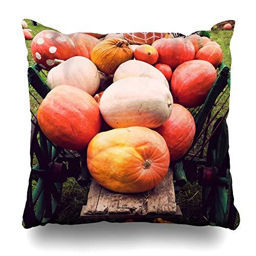 Suesoso Decorative Pillows Case 18 X 18 Inch Pumpkins in A CartThrow Pillowcover Cushion Decorative Home Decor Nice Gift Garden Sofa Bed Car