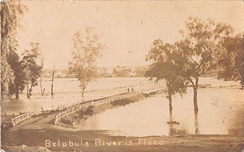 belubula-river-australia-flood-disaster-real-photo-antique-postcard-j54612