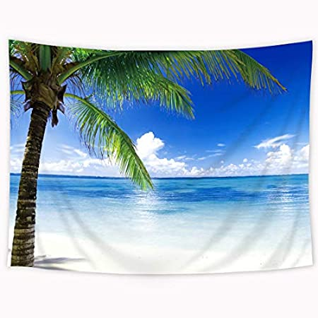 51PZAdrCePL._SS450_ Beach Tapestries and Coastal Tapestries