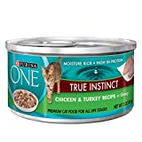 memorable recipes - Purina ONE Chicken & Turkey Recipe in Gravy Wet Cat Food