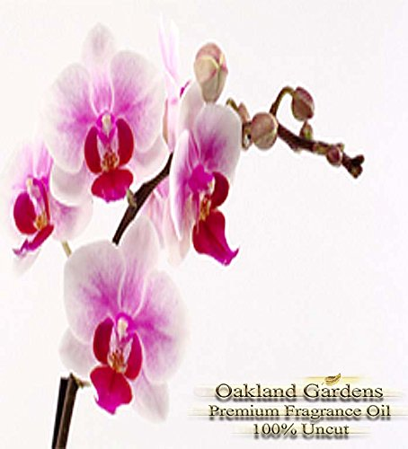 NANTUCKET BRIAR Fragrance Oil - Fresh orchid blended with bergamot, patchouli and musk - BULK Fragrance Oil By Oakland Gardens (060 mL - 2.0 fl oz Bottle) ()