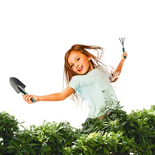 4pcs/1Set Garden Hand Tool Kit Plant Gardening Shovel Spade Rake Trowel Plastic Handle Metal Head Garden Tools by Generic