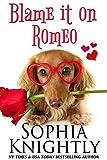 Blame it on Romeo (Beach Read Book 2)
