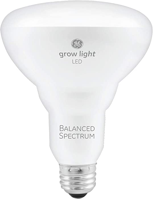 Top 10 Full Spectrum Light Bulb Writers Office