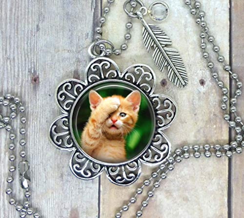 Kittens and Cats Oh My, Cute Photo in Setting, Adorned with a Feather and Clear Swarovski Crystal. Your Choice, Necklace, Backpack Clip, Keychain or Purse Clip. Cat's Rule! Packaged in a Cute Gift Bag