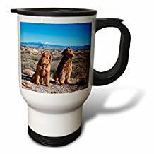 3dRose Airedale Terriers, Sierra Blanco Mt-Zandria Muench Beraldo, Stainless Steel Travel Mug, 14-Oz