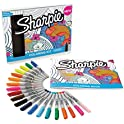 21-Count Sharpie Permanent Markers