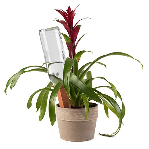 Modern Innovations Terracotta Plant Watering Stakes for Home and Vacation Plant Watering, Set of 4