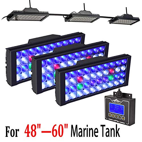 Saltwater Coral Led Lighting in US - 4