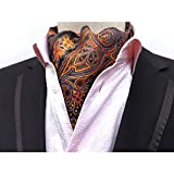 Shindek Mens Silk Like Jacquard Woven Vintage Paisley Floral Cravat Ascot