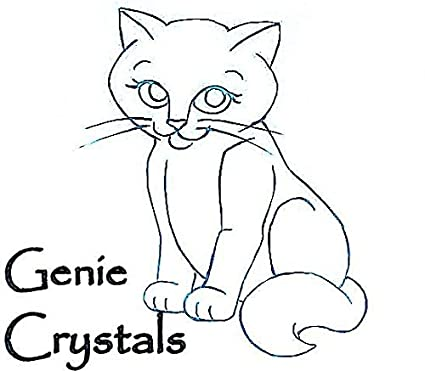 Amazon Com Genie Crystals Generic Washable Cat Litter Replacement