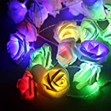 Avanti 20 Led Battery Operated String Romantic Flower Rose Premium Fairy Light Lamp Outdoor for Valentine's Day, Wedding, Room, Garden, Christmass, Patio, Festival Party Decor (Colorful)