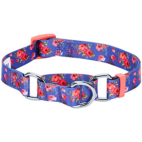 Blueberry Pet 6 Patterns Spring Scent Inspired Rose Print Safety Training Martingale Dog Collar, Irish Blue, Large, Heavy Duty Adjustable Collars for Dogs