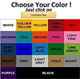 #10: NFL Oakland Raiders Color Team Logo Car Decal