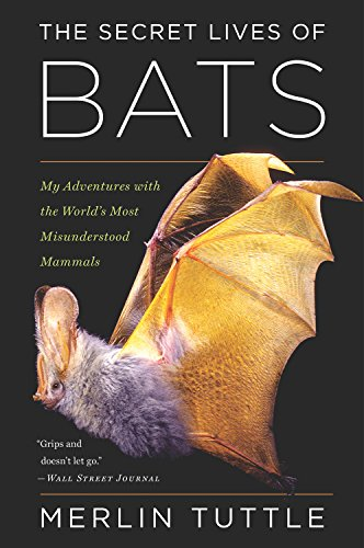 Bat Species (The Secret Lives of Bats: My Adventures with the World's Most Misunderstood Mammals)