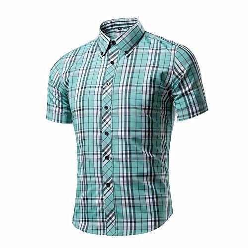 助言タービン有毒シャツ メンズ 半袖 カジュアル チェック ボタンダウンコットン 大きいサイズ 夏