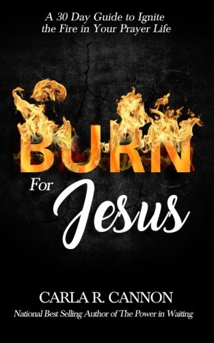 Burn for Jesus: A 30-Day Devotional to Ignite Fire in Your Prayer Life
