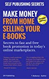 Make Money From Home Selling Your E-books (Self Publishing Secrets Book 1)