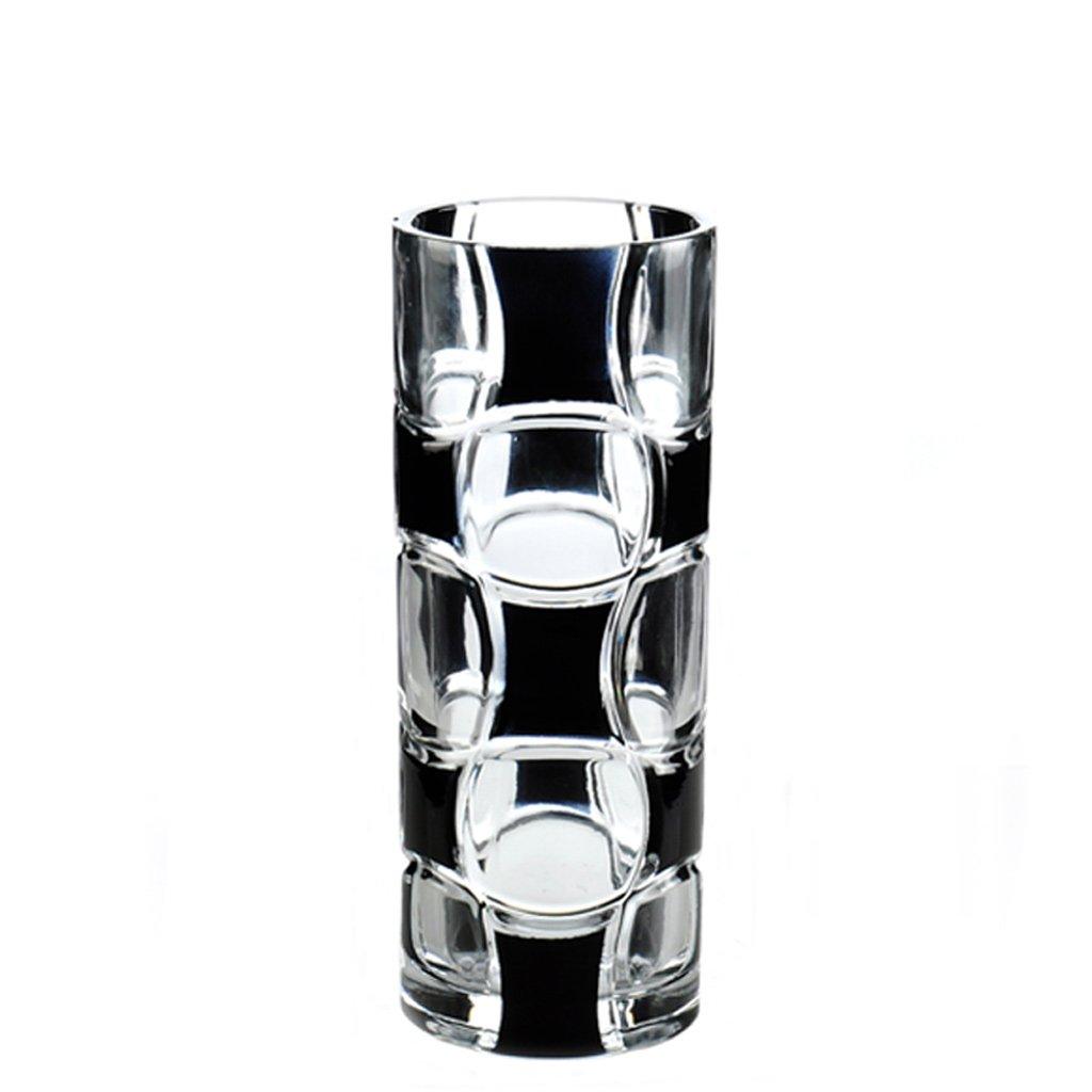 GAODUZI シンプルでモダンなガラスの花瓶透明なストレートスリムドライフラワーリッチバンブーリリーフラワーの花瓶 B07BD1C19L