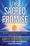 Bargain eBook - The Sacred Promise