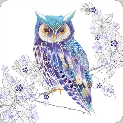 Greeting Card (NQ4881) - Blank/Birthday - Beautiful Owl - Pizazz Limited Edition Range - Flittered Finish Nigel Quiney