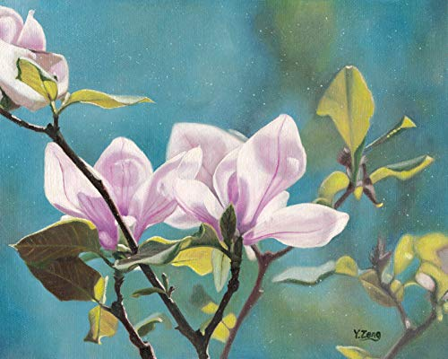 Amazoncom Oil Painting Original Magnolia Flower Plant On Canvas