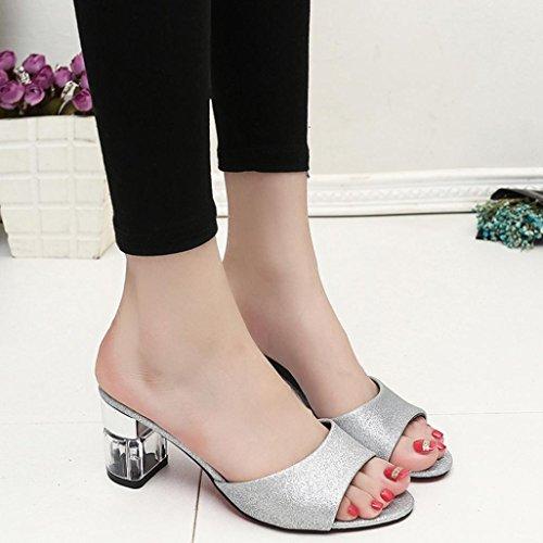 LANDFOX Zapatos de Bohemia de las sandalias del flip-flop del talón del verano del verano de la manera de las mujeres plata