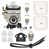 Hayskill WYK-186 Carburetor with Tune Up Kit for WYJ-138 Echo SHC-260 SHC-261 HCA-260 HCA-261 PB-260L PE-260 PE-261 SRM-260 SRM-261 PPT-260 PPT-261 Trimmer Brushcutter
