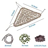 AUBBC Bearded Dragon Hammock, 100% Natural Seagrass Triangular Lizard Lounger with Jungle Climber Vines Reptile Leaves Hooks Feeding Dish for Geckos, Anoles, Snakes and More