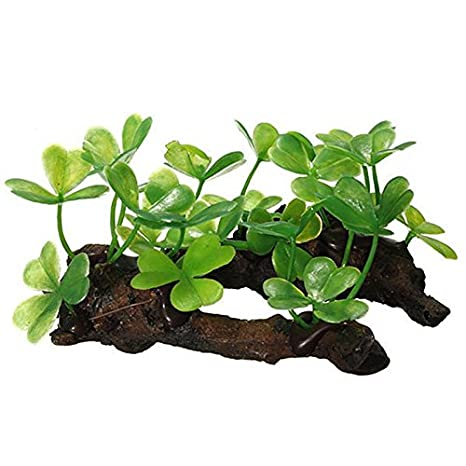 LAAT Planta de Resina de Acuario Plantas para Acuarios Plantas Artificiales Decoración de la Planta - Estilo 1: Amazon.es: Productos para mascotas