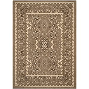 Amazon Safavieh Courtyard Collection CY6727 22 Brown