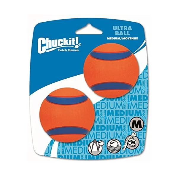 Chuckit Ultra Ball, Durable High Bounce Rubber, Launcher Compatible, 2 Pack, Medium 3