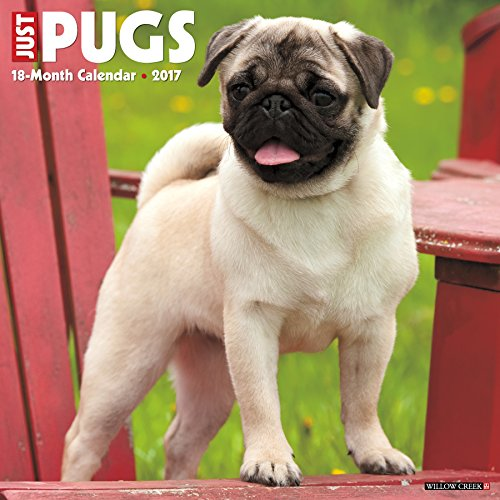 Just-Pugs-2017-Wall-Calendar-Dog-Breed-Calendars