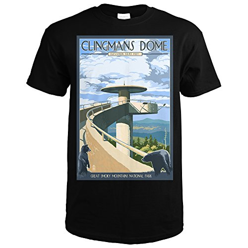 Great Smoky Mountains National Park, Tennesseee - Clingmans Dome (Black T-Shirt - Dome Clingmans