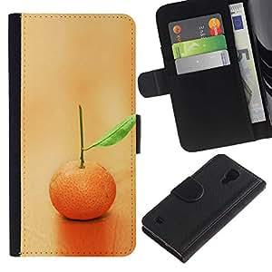 Paccase / Billetera de Cuero Caso del tirón Titular de la tarjeta Carcasa Funda para - Fruit Macro Lonely Orange - Samsung Galaxy S4 IV I9500