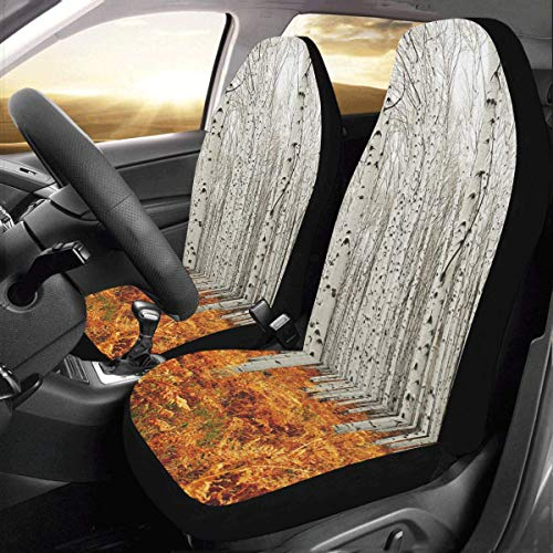 Artsadd Brich Tree Fabric Car Seat Covers (Set of 2) Best Automobile Seats Protector (Trees Brich)