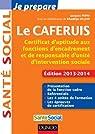 Je prépare le CAFERUIS - 2e éd. - Edition 2013-2104: Certificat d'aptitude aux fonctions d'encadrement et de responsable d'unité d'intervention sociale par Papay