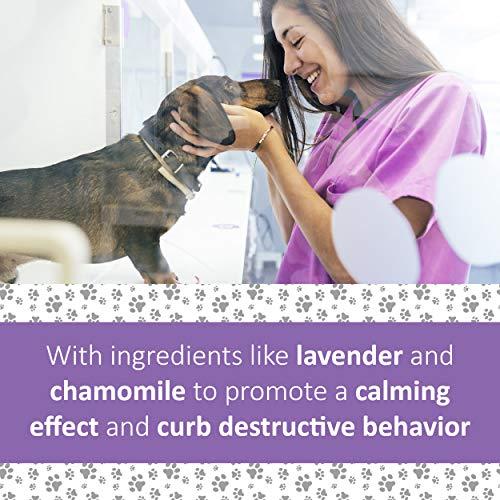 Veterinary Formula Clinical Care, Pet Calm Premium Dog Supplement, 90 Soft Chews