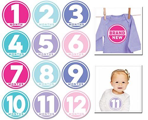 Sticky Bellies Baby Month Stickers- Modern Miss