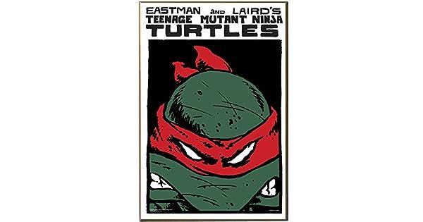 Amazon.com: Plata Buffalo nt0936 Teenage Mutant Ninja ...