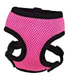 Hamilton Adjustable Hen Soft Mesh Chicken Harness, Pink, 5/8'' x 12''/18''/Small