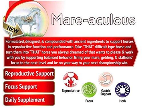 Mare-Aculous - 1.5 Lb. - Organic, GMO Free Calming Supplement