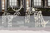 2-Piece Lighted Christmas Holiday Deer Family - 48'' Animated Buck & 42'' Animated Doe - 210 Clear Lights