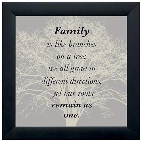 Elanze Designs Family Tree 12 x 12 Black Wood Shadow Box Framed Sign (Black Framed Plaque)