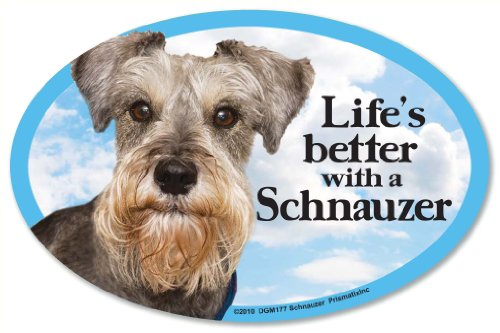 - Schnauzer Oval Dog Magnet for Cars
