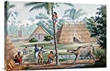 Global Gallery GCS-266167-30-142 ''Louis De Freycinet Timor Island Indonesia'' Gallery Wrap Giclee on Canvas Wall Art Print