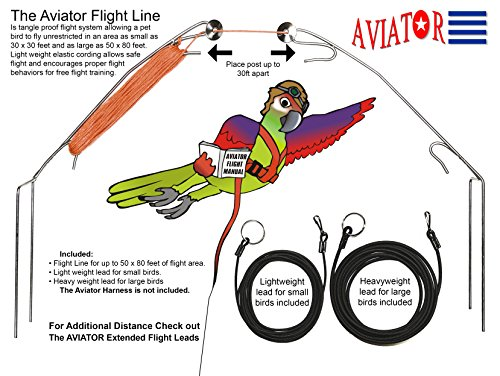 the aviator harness - 3
