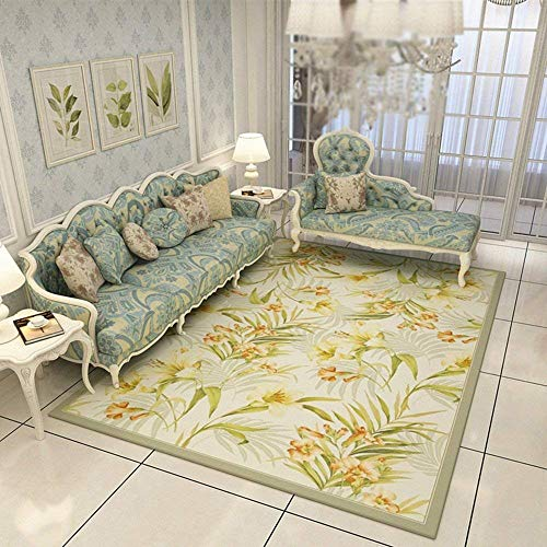 DEED Carpet-Living Room Sofa Coffee Table Rug Bedroom Bed Linen Simple Modern Nordic Pastoral American Household Rug Entrance Hall Porch Water Absorption Quick-Drying,160230cm